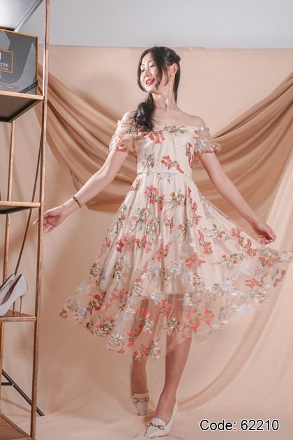 62210 - Arrin Embroidery Lace Dress